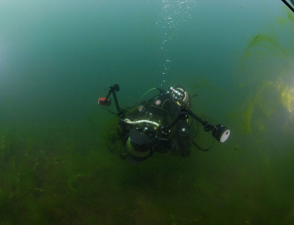 Specialisatie Digitale Onderwaterfotografie