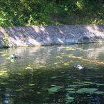 Lunet 3 Water in