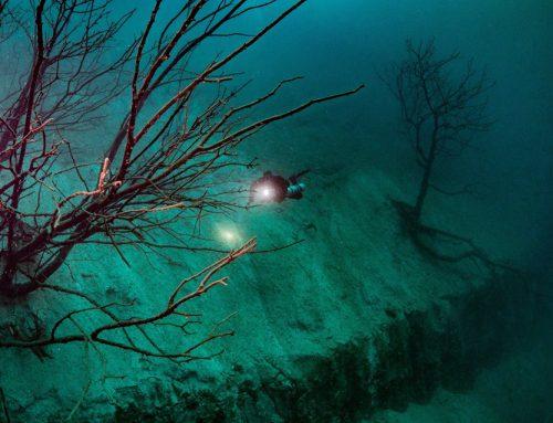 Beoogd duikweekend Kreidesee te Hemmoor